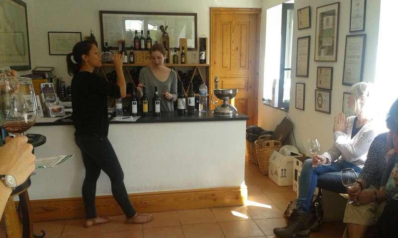 Postupně jsme ochutnali 2 vzorky vína stolního a 3 vína portská