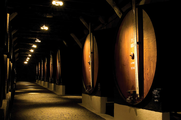 V první fázi zraje portské víno v sudech toneis