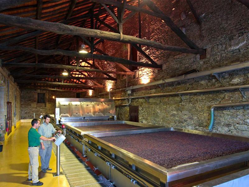 Velká vinařství využívají moderní technologie
