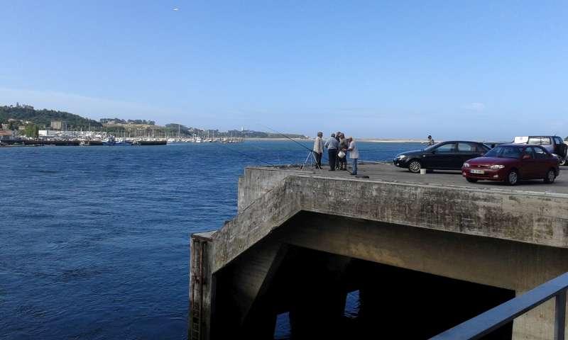 Rybáři chytají tresky z betonového mola