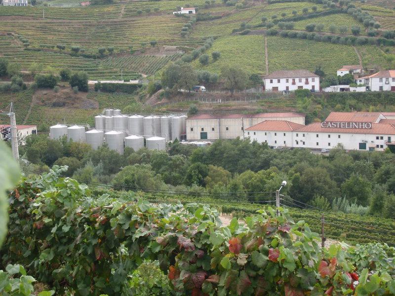 Quinta do Castelinho a její obrovské nerezové tanky na víno