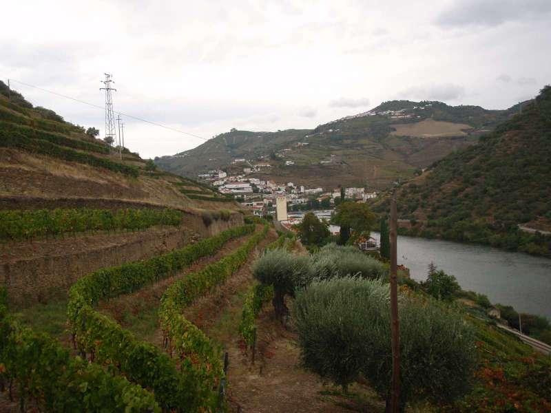 Pohled na Pinhao od Quinta de La Rosa