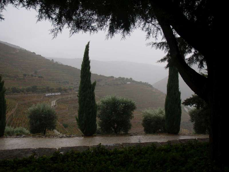 Pohled na vinice směrem k Régua