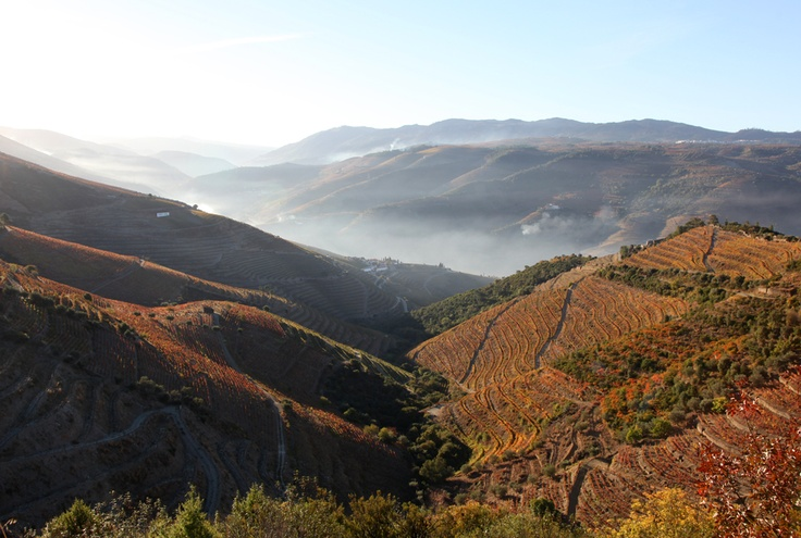 I na podzim je v údolí řeky Douro krásně