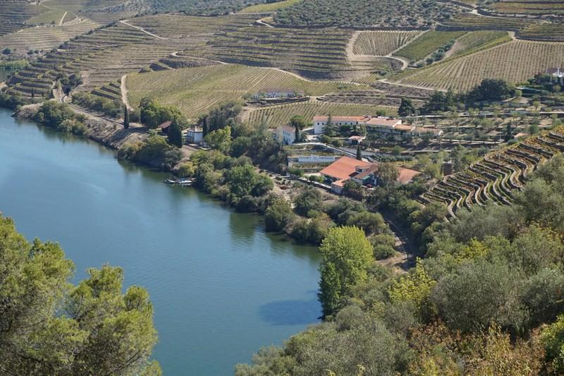Teď už mám fotku Quinta de Vargellas vlastní. Na stránce Vinařství je ještě stažená. Pak jistě chápete, proč jsem tak šťastný!