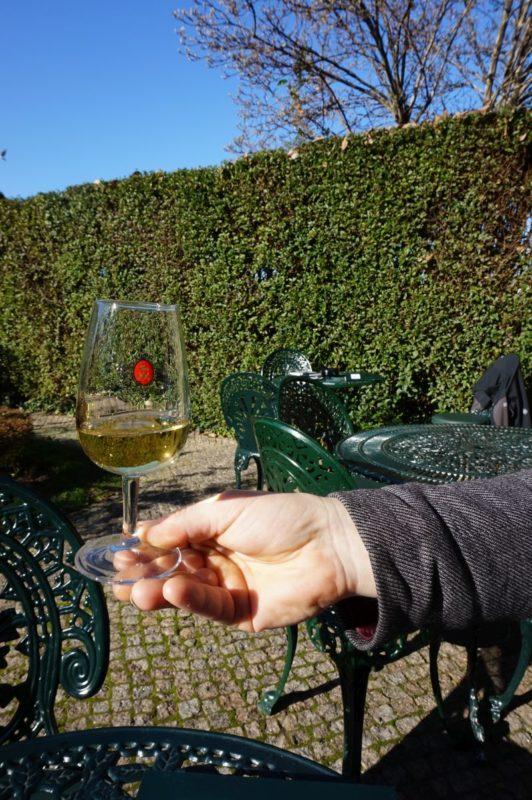 Zahradní posezení u Taylorů jsme si tenkrát s Jurou hodně užili. Prosincových 22 °C přes poledne a White Dry na stole. Pecka.