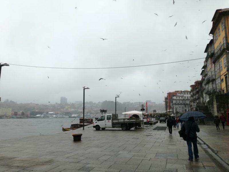 Tomu lze říct docela pošmourné odpoledne. Ribeira, Porto.