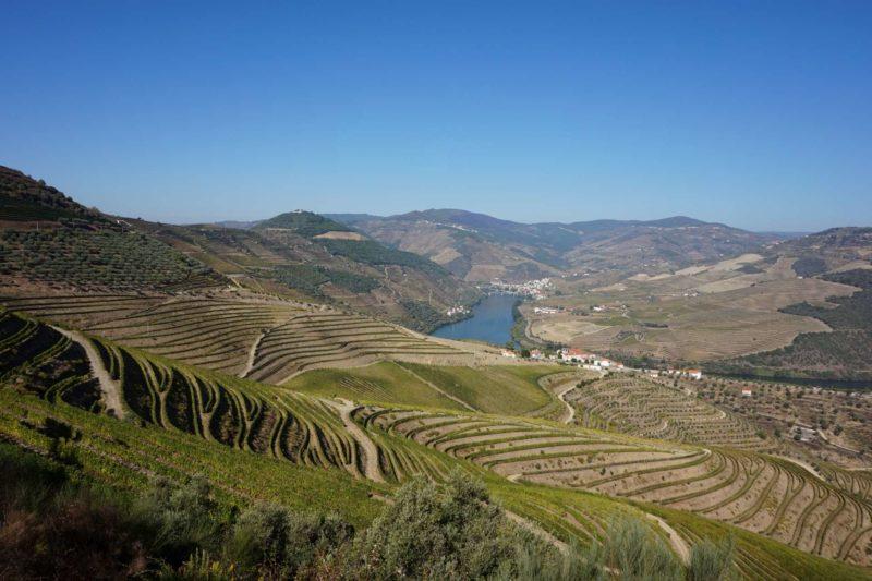 Údolí řeky Douro lemují vysoké kopce s vinicemi