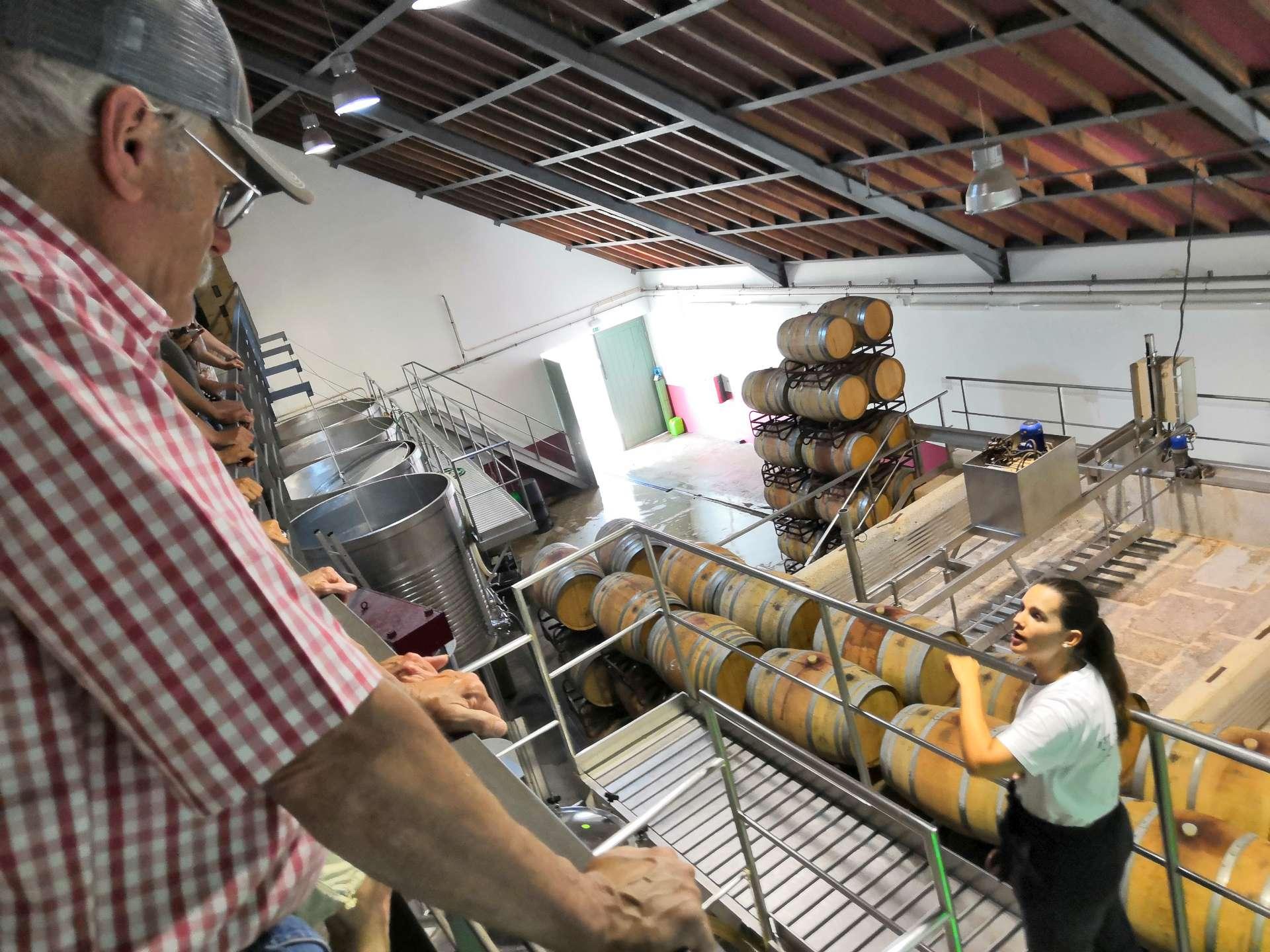 Tour s výkladem o vinařských technologiích, druzích zdejších vín a také historii.