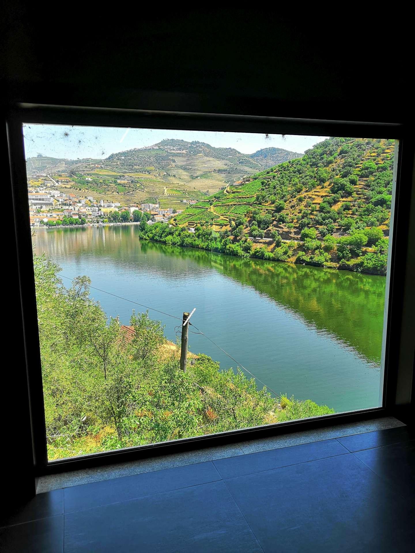 Když jsme byli u těch výhledů z oken - z tasting roomu vidíte rovnou do Pinhaa.