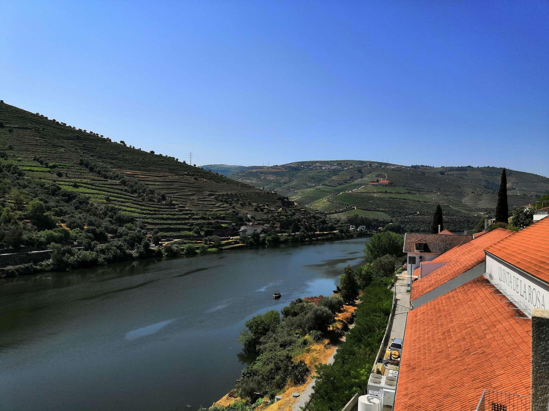 Náš 4. den - pátek - se odehrával ve znamení prohlídek vinařství - Quintas. Ještě dopoledne nás uvítali v prvním z nich, Quinta de la Rosa. Řeku Douro máte odtud jako na dlani.