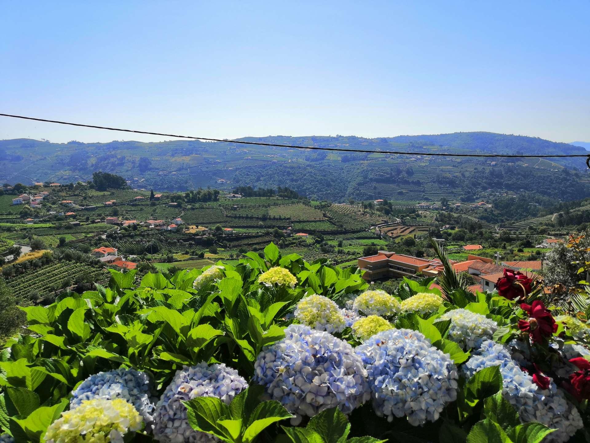 ... ani nemusíte moc natahovat krk a koukáte se dolů do vesnice a na zelené kopce v Douru.