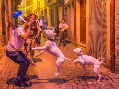 Festival svatého Jana v Portu je noc plná barev a veselí