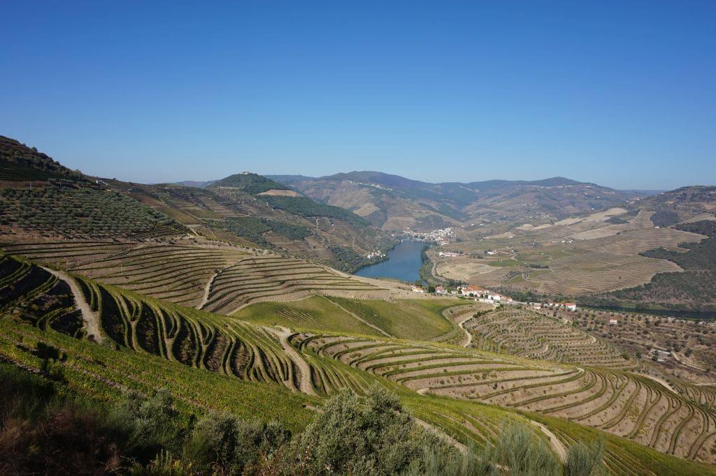 Údolí řeky Douro má jedinečné klimatické podmínky pro pěstování vinné révy
