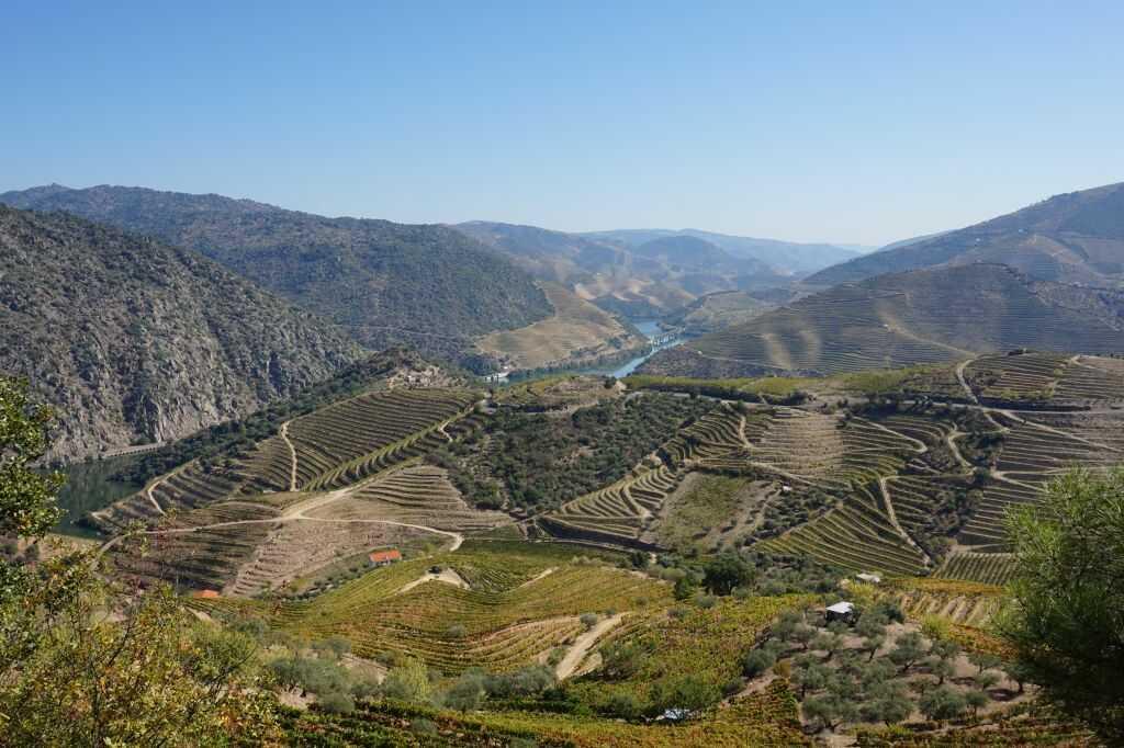 Pohled na údolí řeky Douro v Portugalsku